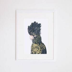 Lily the Black Cockatoo | Giclee Print by For Me By Dee