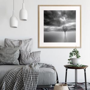 Lonely Tree   Prints and Canvas by Photographers Lane