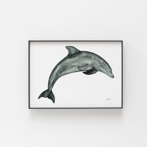 Luna the Dolphin Art Print by Pick a Pear | Unframed