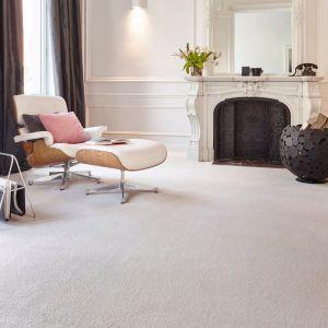 Luxe Palette | Twist  Carpet | Various Colours | Carpet Court