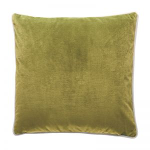 Luxury Velvet Cushion | Oasis