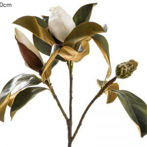 Magnolia Bud   White