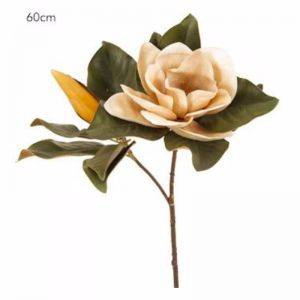 Magnolia Flower | Coffee - 6 Stems