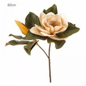 Magnolia Flower | Coffee - 6 Stems