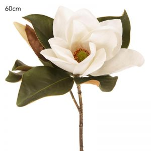 Magnolia Flower | White - 6 Stems