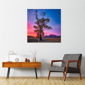 Majestic | Canvas Print by Scott Leggo