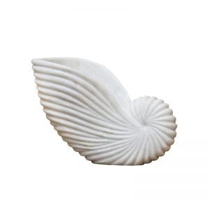Marble Conch Shell | Medium