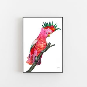 Mardi the Colour Cockatoo Art Print by Pick a Pear | Unframed
