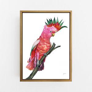 Mardi the Colourful Cockatoo Wall ArtPrint | by Pick a Pear | Canvas