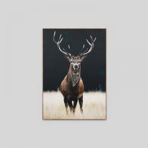 Meadow Deer | Framed Canvas Print