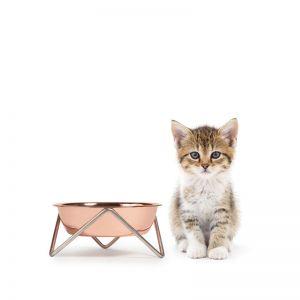 Meow | CHROME Cat Stand & Bowl | VARIOUS COLOUR BOWL