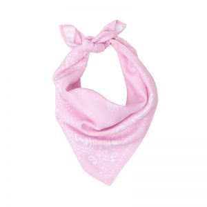 Modern Paisley Dog Scarf | Blush