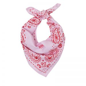 Modern Paisley Dog Scarf | Blush and Red