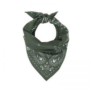 Modern Paisley Dog Scarf | Dill
