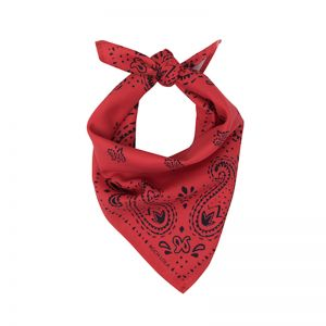 Modern Paisley Dog Scarf | Red/Navy