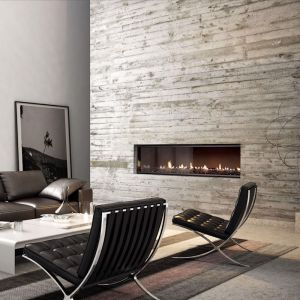 Multiroom Gas Fireplaces | DX Series | DX1500 Single Sided