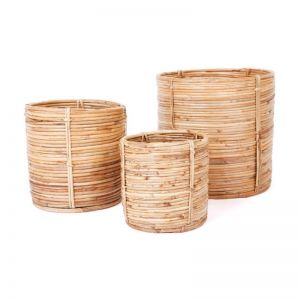 Natural Cane Decorative Planters Baskets | Set of 3 | Ubud | Indoor Use Only
