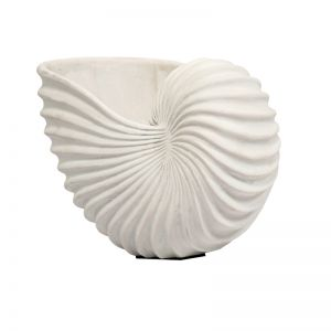 Nautilus | Small | White