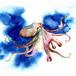 Octopus ink | Original Watercolour Artwork