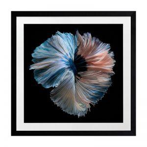Omega | Framed Art Print