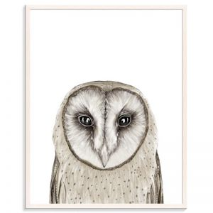 Owl | Bec Kilpatrick | Canvas or Prints by Artist Lane