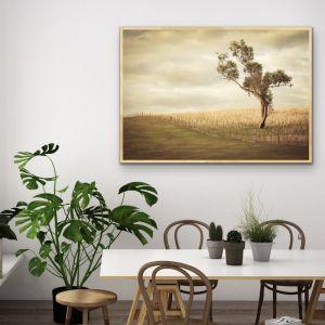 Paddock | Australian Gundagai Landscape | Art Print