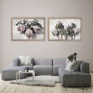 Pale Proteas LS | Set of 2 Art prints | Unframed