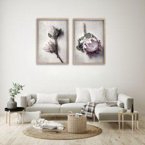 Pale Proteas PT | Set of 2 Art prints | Unframed