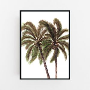Palm Breeze Duo in White Print by Pick a Pear | Canvas Wall Art