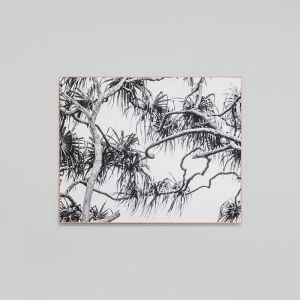 Palm Breeze | Framed Photographic Canvas Print | by Matthew Thomas