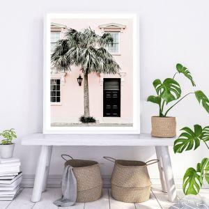 Palm House I Photo Art Print (Various Sizes)