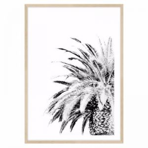 Palm Springs Framed Print | freedom