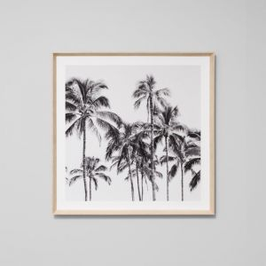 Palm Trees | Framed Photographic Print