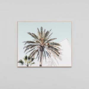 Palm View | Framed Photographic Canvas Print | by Matthew Thomas