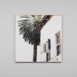 Palm Window Square | Framed Photographic Canvas Print | by Matthew Thomas
