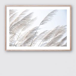 Pampas Breeze 1   Framed Giclee Art Print by Wall Style