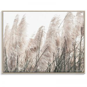 Pampas Grass 2 | Canvas or Print by Artist Lane