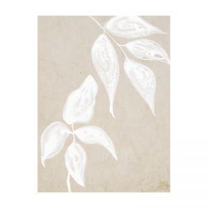 Paper Bark I   Canvas Print