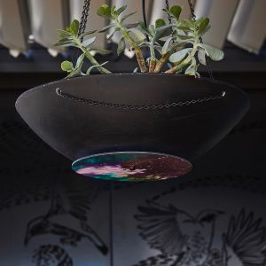 Parrotfish Hanging Planter by Katie McKinnon