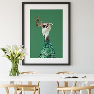 Pea Hen | Canvas or Art Print