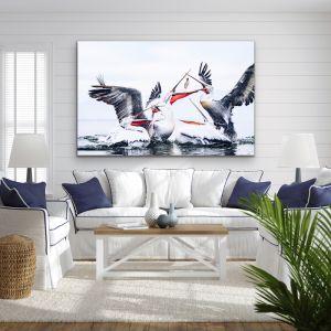 Pelican Squabble | Hamptons Framed Canvas or Art Print