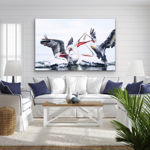 Pelican Squabble | Hamptons Photographic Art & Canvas Print