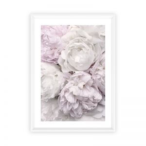 Peony Bloom | Photographic Art Print