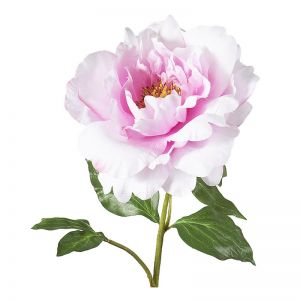 Peony Spray | Light Pink