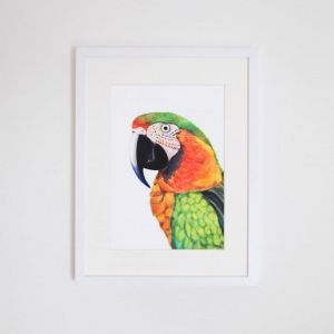 Percy the Parrot Giclee Print | by For Me By Dee