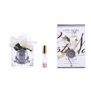 Perfumed White Rose