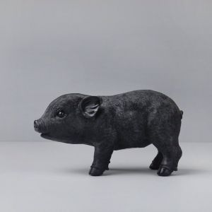 Pig Money Box | Black