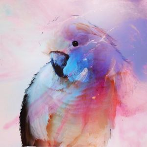 Pink Cockatoo Parrot in Blue | Art Print by Antuanelle