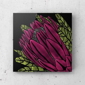 Pink Protea on Midnight Black | Fine Art Prints & Stretched Canvas