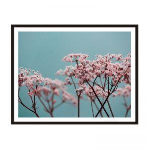 Pinky | Framed Print | Artefocus